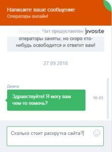 Как появиться на первой строке поиска с помощью JivoSite